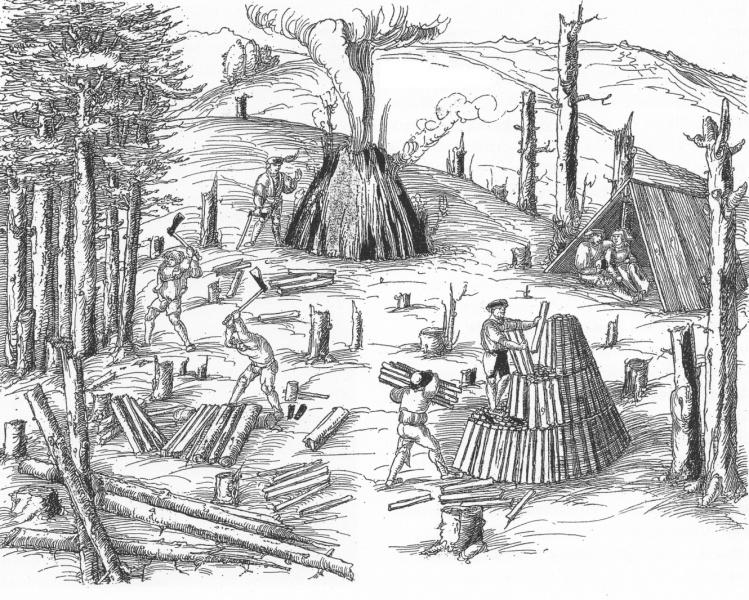 Holzkohlegewinnung und Waldverwüstung  in den Vogesen im 16. Jahrhundert